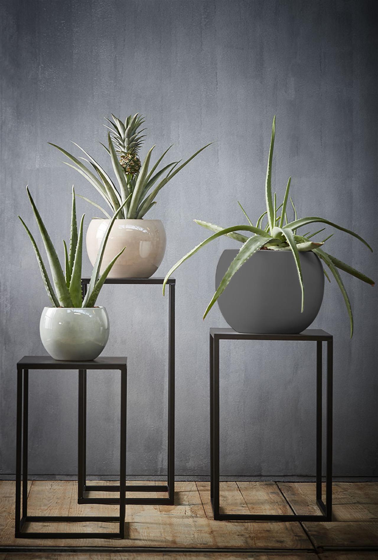 Monet Ceramic Pot | alvaluz.com