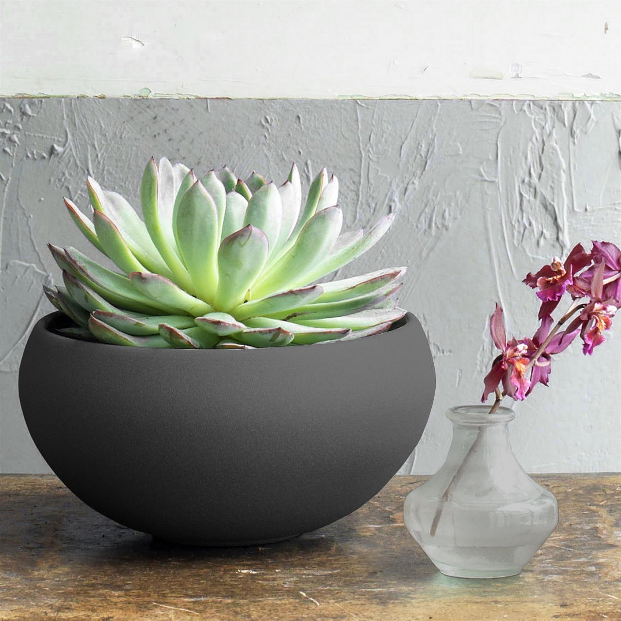Monet Ceramic Bowl | alvaluz.com
