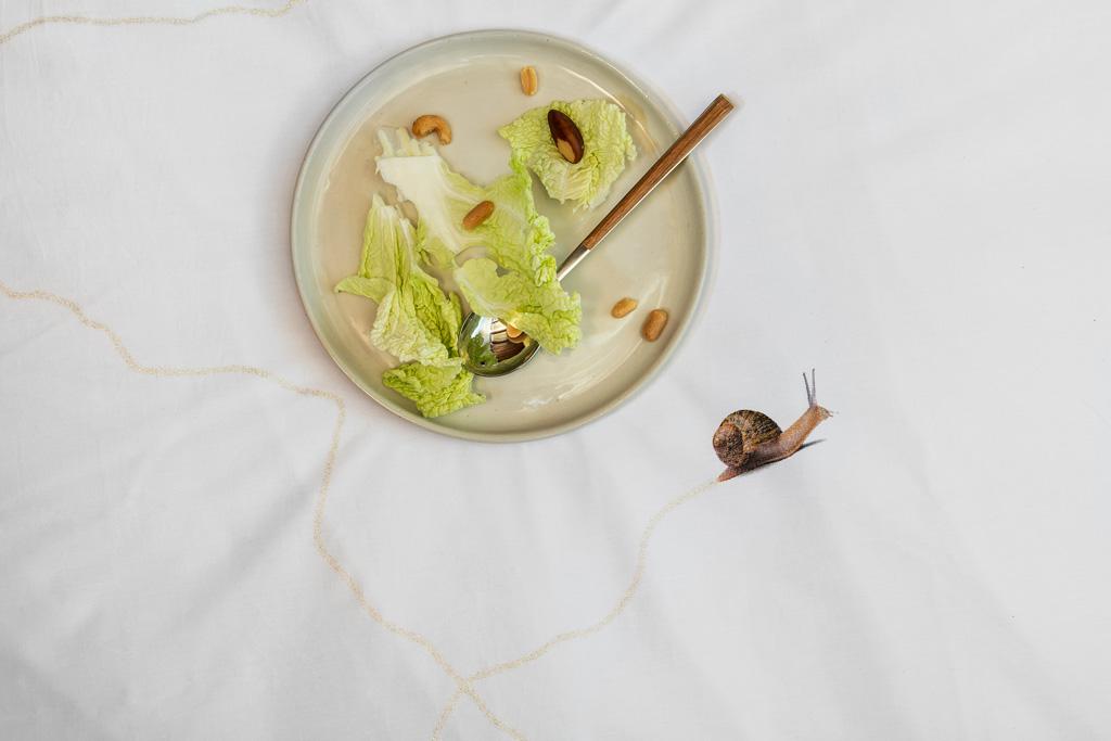 snail trail duvet cover | alvaluz.com