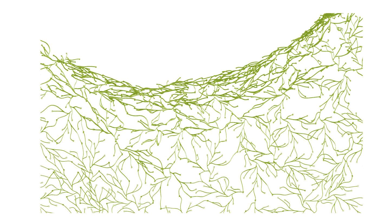 Vitra algue | alvaluz.com