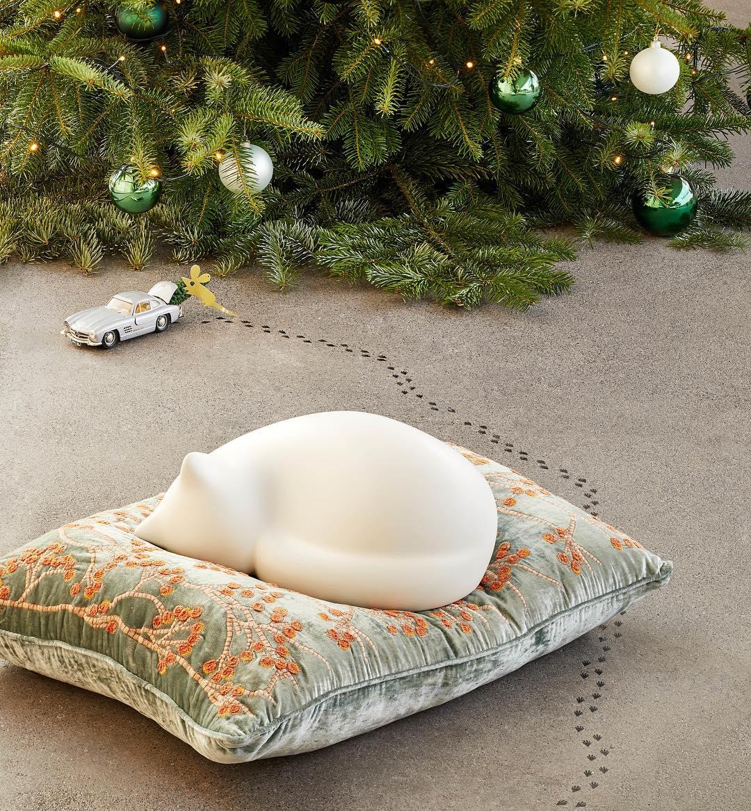Resting Cat | alvaluz.com
